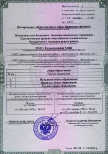 Лицензия 2016 Приложение